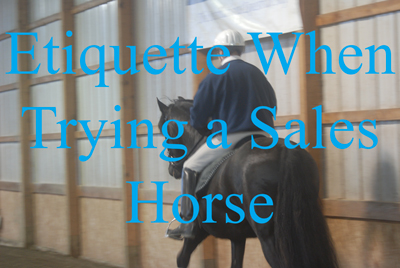 Etiquette When Trying a Sales Horse