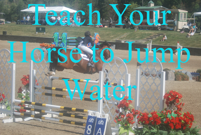 Teach Your Horse to Jump Water