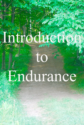 Introduction to Endurance