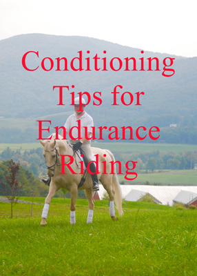 Conditioning Tips for Endurance Riding